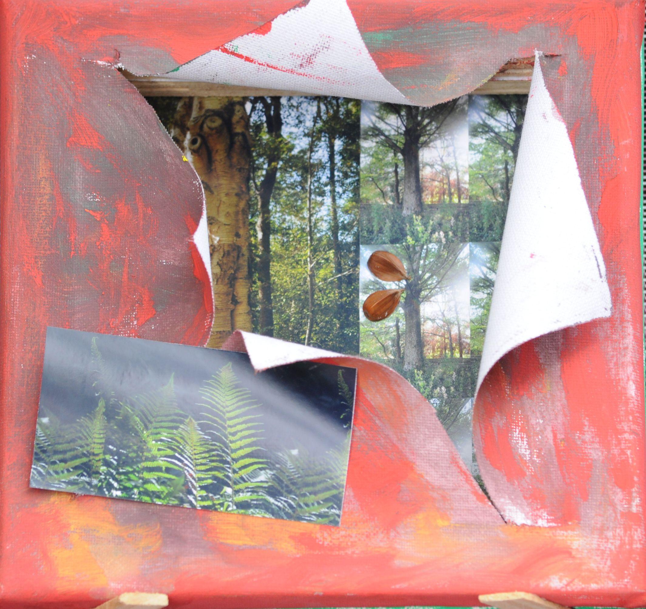 Ineke - Bomen zoeken voorzijde